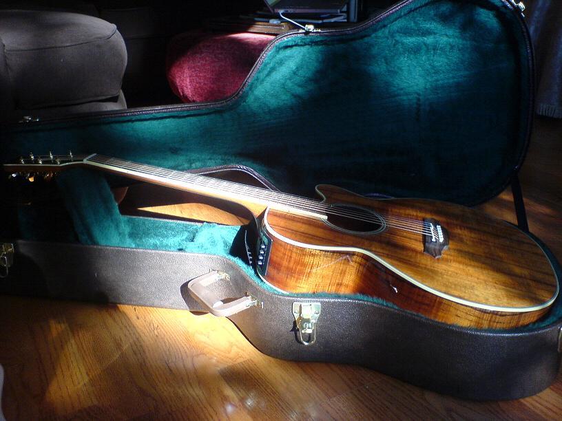 гитары takamine 12 струн: